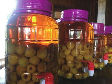 枇杷果泡酒的十大功效和作用【分享】
